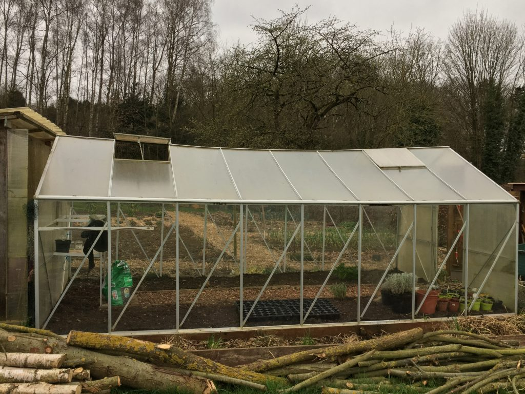 First Year with my Greenhouse - Dgentlegardener-